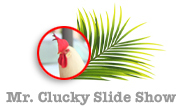 Mr. Clucky Slideshow